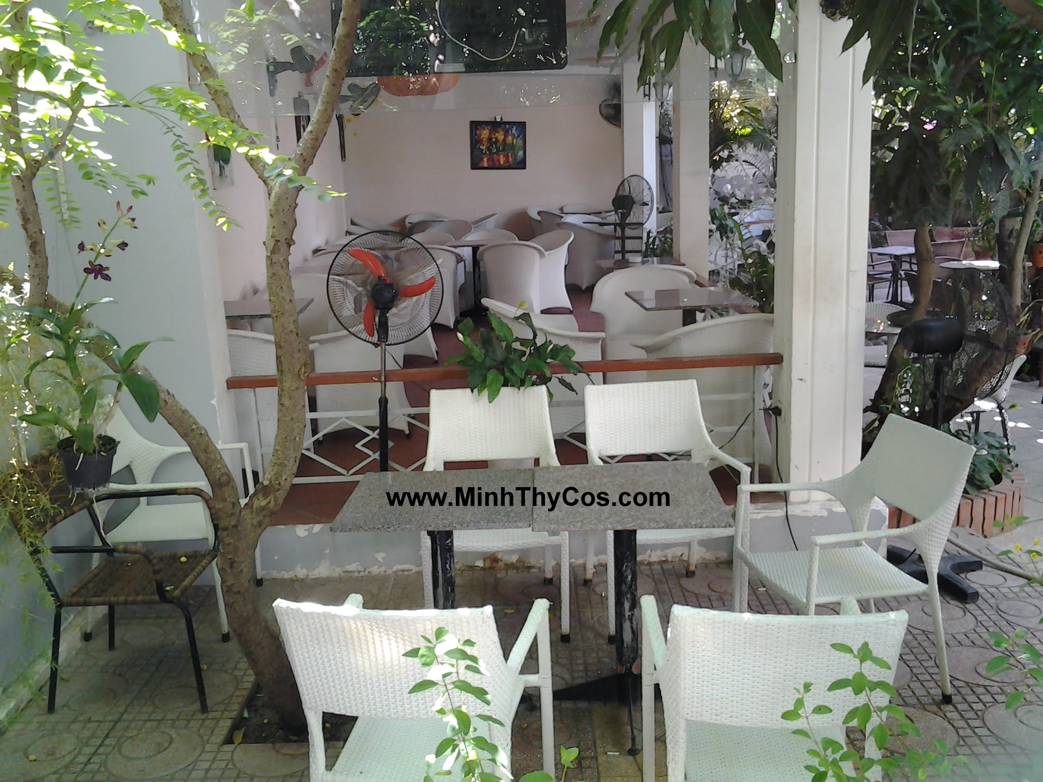 Outdoor wicker dining set cafe Linh Lan Phan Thiet